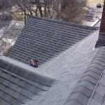 Multi family roof